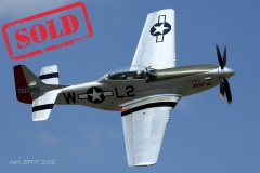 FOR SALE- TF-51D Mustang